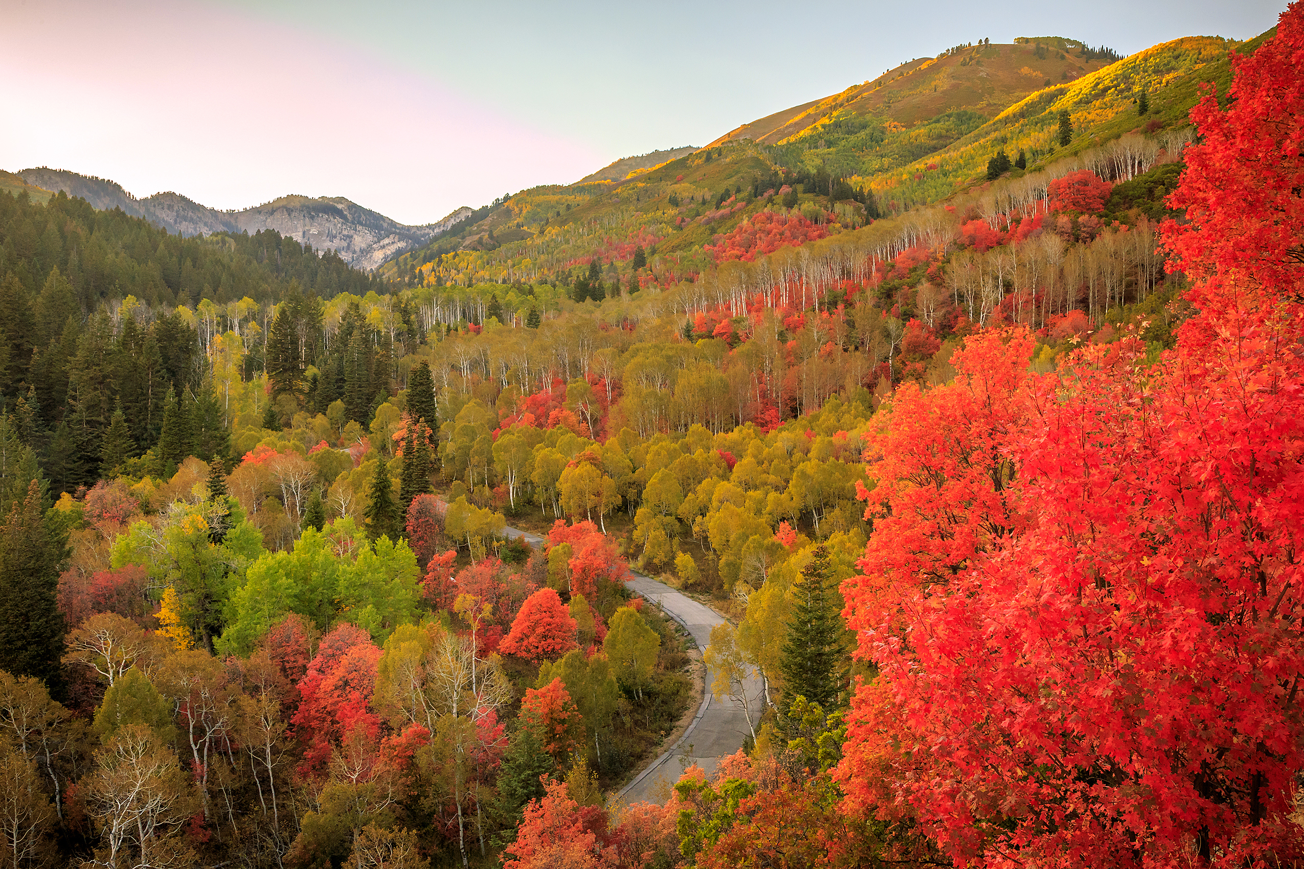 Fall color above a road in Snake Creek Canyon, Utah, USA.